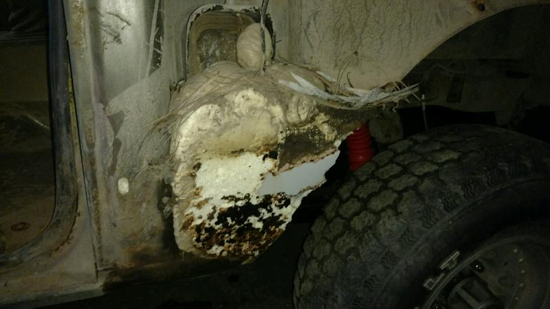 Name:  passenger side front fender.jpg